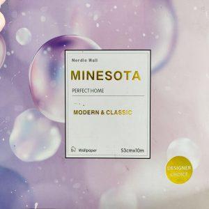 Minesota 2020